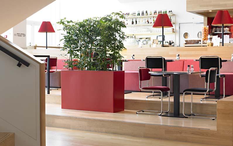 Büropflanzen Slider 14
