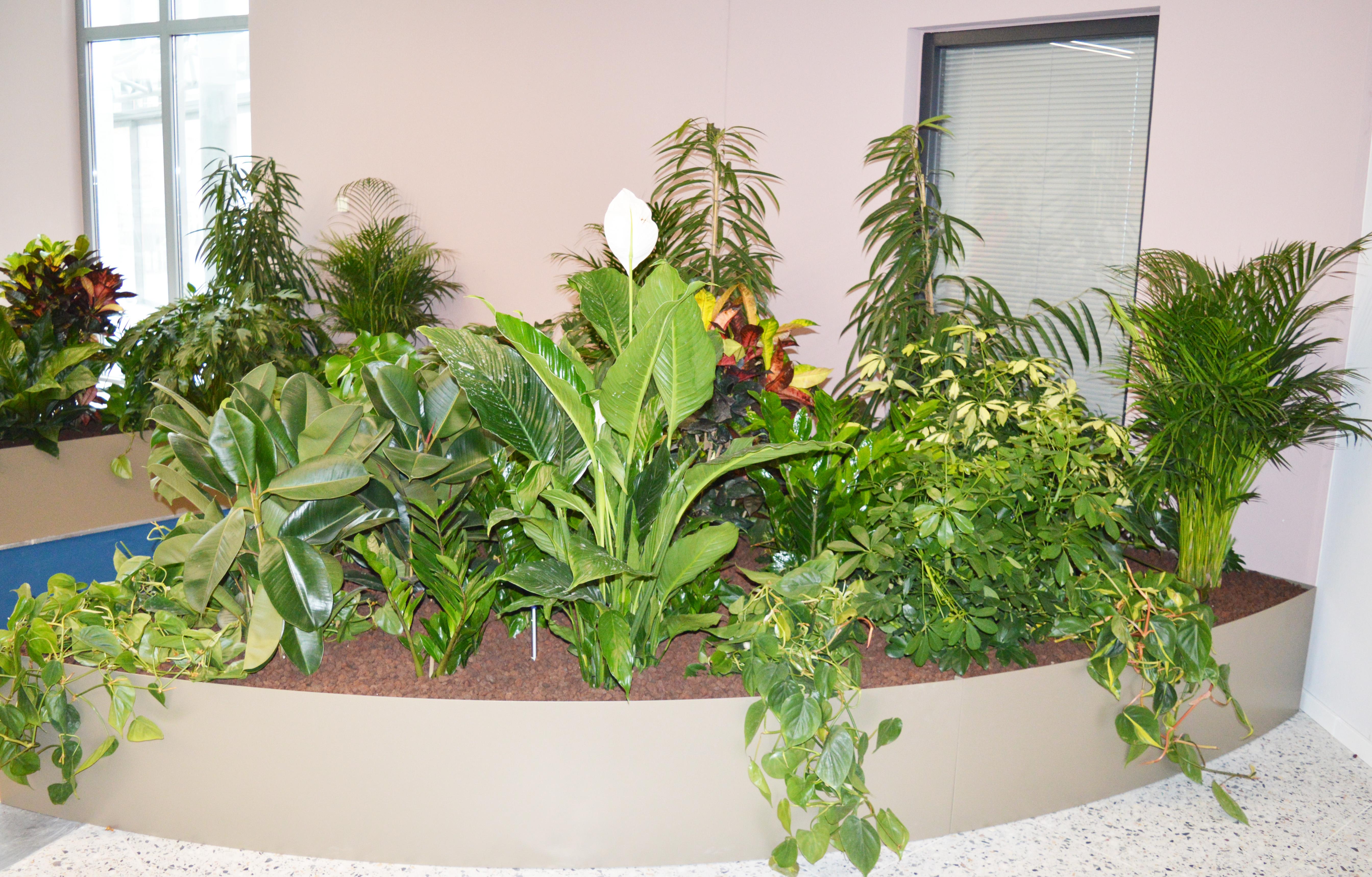 Becken mit Rastersystem bepflanzt innen 4