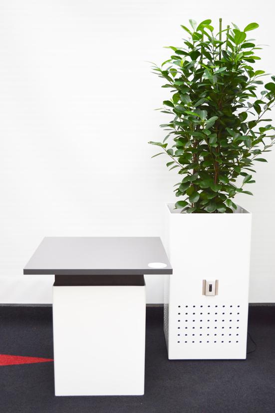 MM Box weiss hochglanz mit Ficus moclame und Beistelltisch WEB