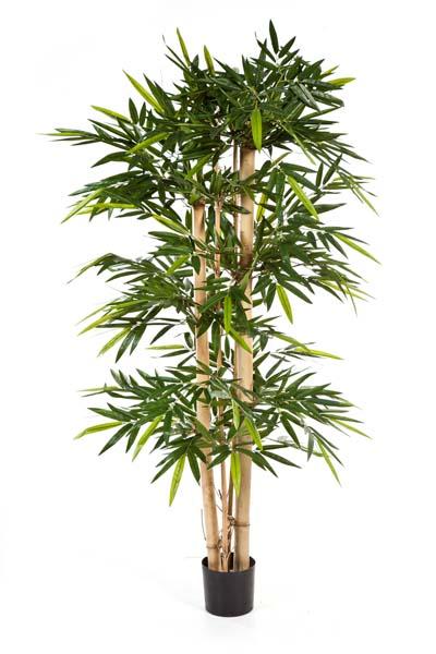 bambus textilpflanzen k nstliche pflanzen kunstpflanzen. Black Bedroom Furniture Sets. Home Design Ideas