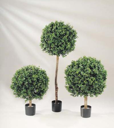 begr nungen archive seite 4 von 7 hydrokulturen begr nungen mietpflanzen b ropflanzen. Black Bedroom Furniture Sets. Home Design Ideas