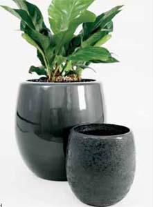 Exklusive Pflanzkübel callisto pflanzgefäße pflanzkübel übertöpfe vasen