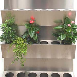 Grüne Wand von W.M. Plattner Design.jpg