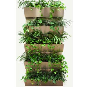 Grüne Wand_von W.M. Plattner Design_Erdpflanzen
