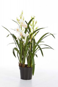 Kunstpflanzen aus Textil oder Kunststoff