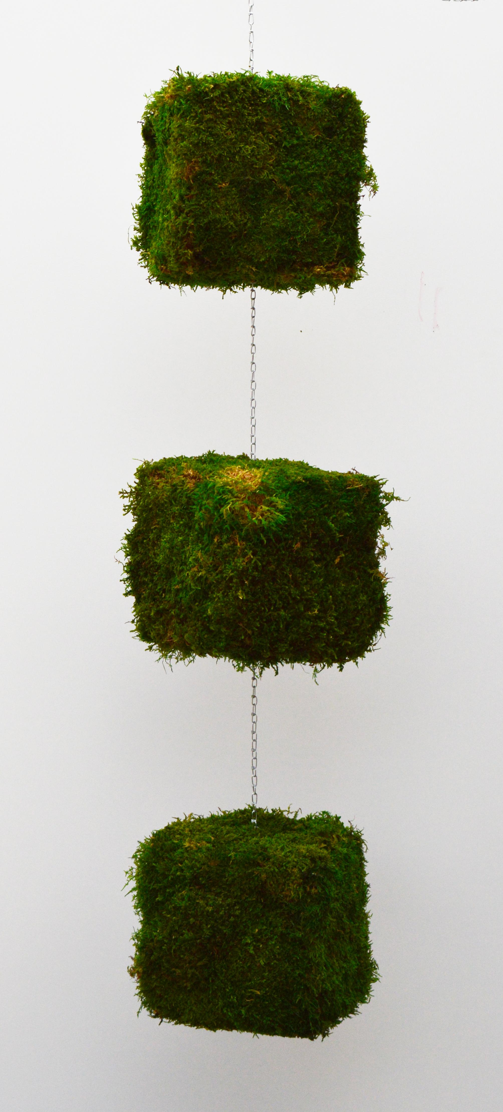 Fein Pflanzgefase Aus Moos Galerie - Hauptinnenideen - kakados.com